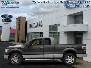 2014 Ford F-150 XLT-LOW MILEAGE   - Low Mileage