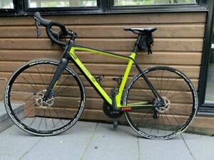 Vélo  Opus Vivace 1