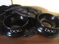 X2 large dog bowls