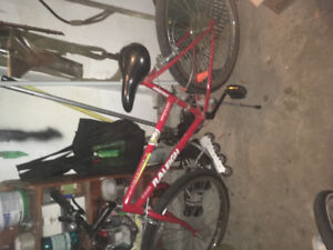 Woman's Raleigh bike for sale