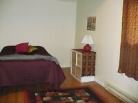 Great furniished room with so much more - female