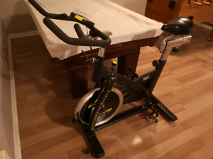 Spin exercise bike - great condition