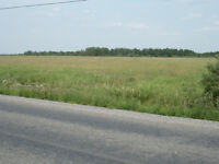 Huge Estate Lot and Potential Development Site – 141 Acres