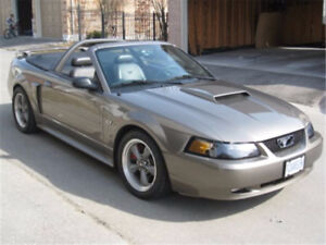 2002 Ford Mustang GT Convertible - $20K in mods by Joe DaSilva
