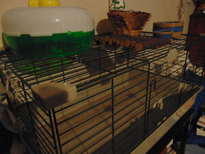 Large rodent cage and accessories contact anneasterly@gmail.com