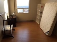Two bedroom apartment looking for roommate