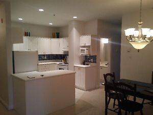 Downtown Condo, Fully furnished. Avail July 1