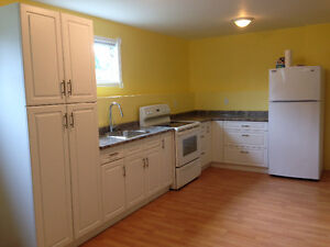 Bright and cosy Basement Suite 1BDRM 1 BATH available Nov.1st/16