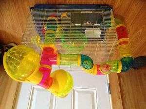 Hamster cage and exercise ball and new bag wood chips.