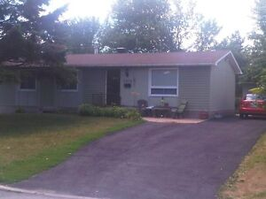 Bright apartment in great Orleans neighborhood...with backyard!