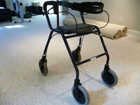 Dolomite walker used 3 times