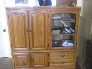Entertainment/Display Cabinet