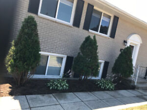 ***ALL-INCLUSIVE 3 Bedroom Gorgeous Main Level Unit***