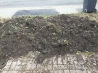 Topsoil. Free to take away.