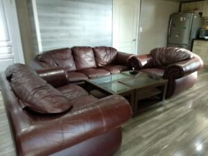 Leather couch set  with centre  table