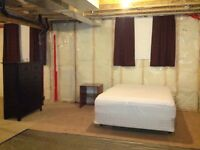 Why Pay For A $$$ Hotel? Rent A Furnished Basement Daily/Weekly!