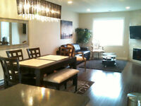 Brand New Furnished Executive in Heart of Downtown