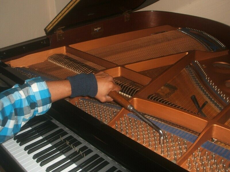 Piano Tuning by Experienced Professional Tuner $80