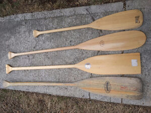 Youth paddles