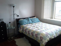 Large Bedroom in a Spacious House - Joyce Station