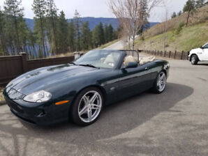 98 Jaguar XK8 Convertible, 76,000 kms, beautiful car