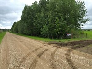 159 Acres in Goodridge Alberta (Bonnyville MD) Strathcona County Edmonton Area image 2