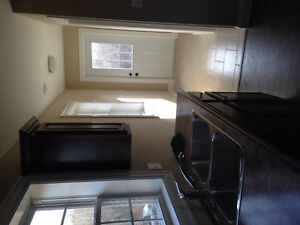 House for rent in chester