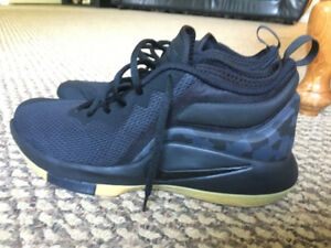 Nike Lebrun Witness ll Basketball Shoes