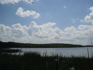 Waterfront Lot, Cameron Lake, Mont Nebo