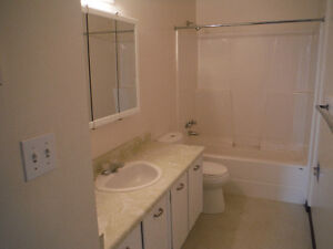 6 plex apartment, newly renovated for $680,000 Prince George British Columbia image 2