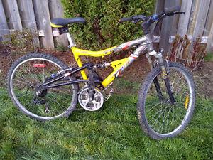 bike Kitchener / Waterloo Kitchener Area image 1