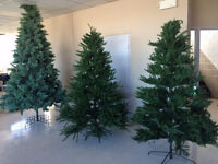 Christmas Trees for Sale - Nice Selection - Best Price