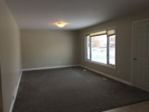 Newly updated 3 Bedroom upstairs suite for rent in Steinbach