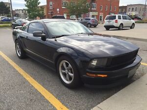MUSTANG.  Stratford Kitchener Area image 2