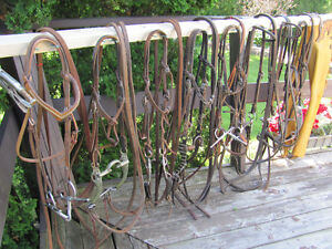 Western Riding Equipment