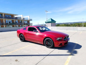 2013 Mustang V6 6spd with warranty