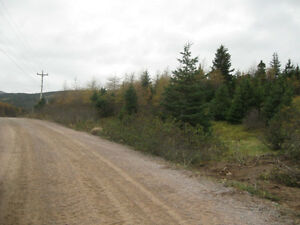 PRIME 4 ACRES ZONED COMM/LIGHT INDUSTRIAL HOLYROOD ACCESS ROAD St. John's Newfoundland image 10