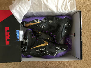 Great Christmas gift Lebron XI BMH Brand New Retailed at $299