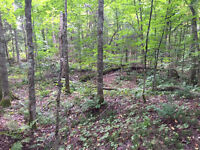 Build your dream home just minutes from Tremblant slopes! Laurentides Québec Preview