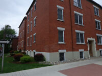 LARGE renovated 3 bed apt end to ottawa university may 1st