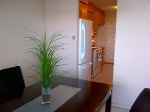 2 Bedroom Beautiful Condo We PaY your utilities -All inclusive