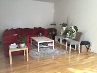 Large 2br renovated apartment close to downtown: 1st Dec