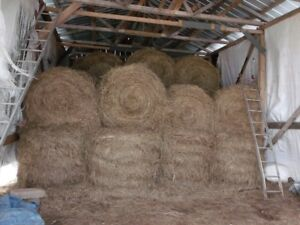 For sale round bales of hay