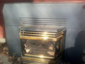 Indoor Insert Gas Fire Place