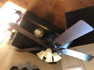 """Hunter 54"""" ceiling fan with lights"""