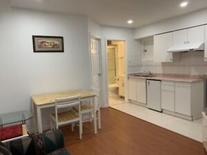 Newly Renovated Basement Suite For Rent (Vancouver East)