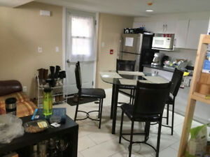 4br-1200ft² -sunny bsmt apt in Little Italy