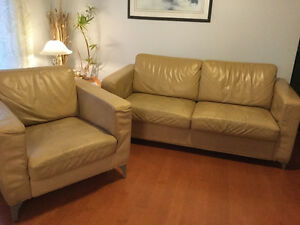 Sofa bed chair leather
