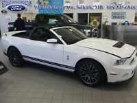 "2011 Ford Mustang ""SHELBY GT CONVERTIBLE""   - $416.52 B/W  - Low"