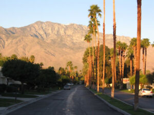 Palm Springs Nov 15-Dec15
